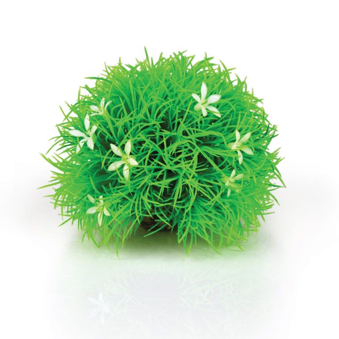 Biorb Topiary Ball with Daises