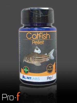Pro-F Catfish Pellet 60g