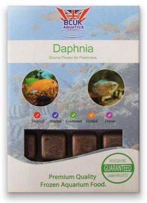 Daphnia (5 packs) SPECIAL OFFER!