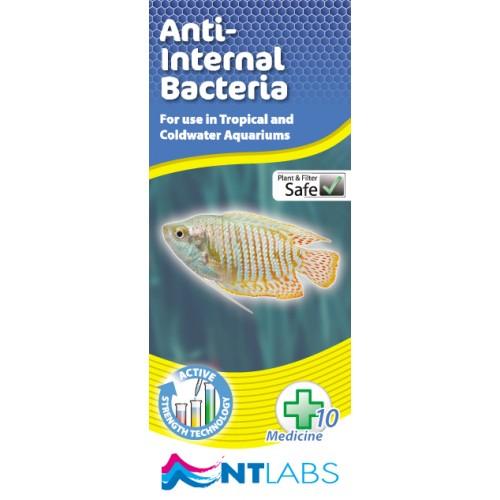 NT Labs Anti Internal Bacteria
