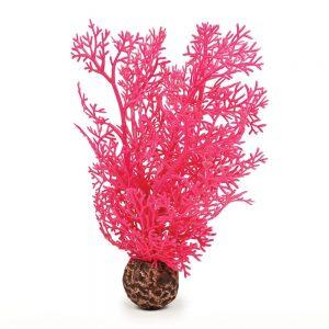 Pink Sea Fan Medium