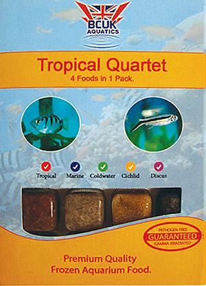 Tropical Quartet (5 packs)